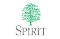 spirit-web.jpg